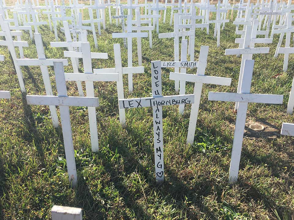 white crosses in ground